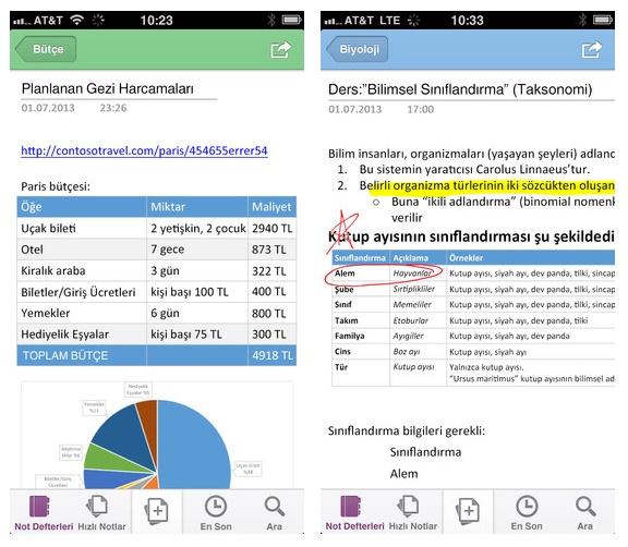 Microsoft OneNote iPhone ve iPad resim