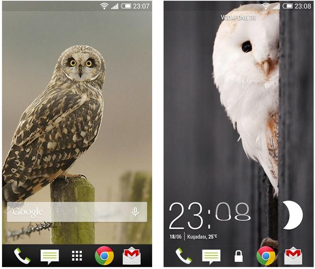mobil13 owls